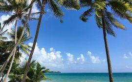La Martinique parmi les destinations préférées des Français 2